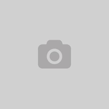 image-placeholder
